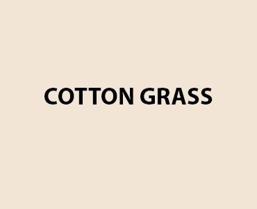 HMG Fence and Shed Paint - Cotton Grass