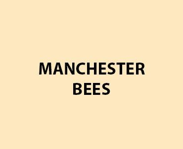 HMG Fence and Shed Paint - Manchester Bees